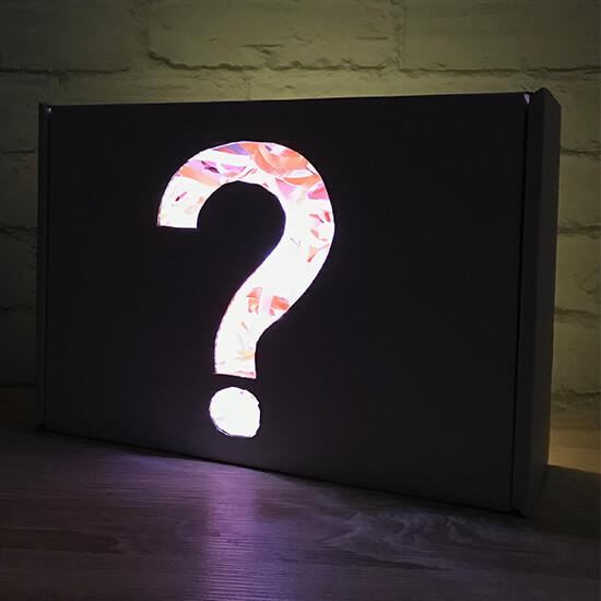 Pug Mystery Box