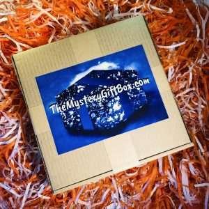 Pug Mystery Gift Box Icon